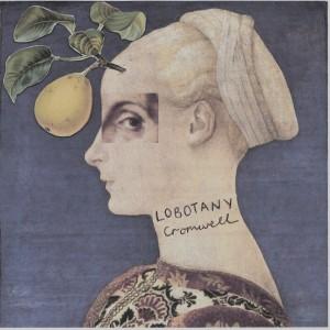 lobotany