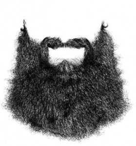Beard_by_picasio