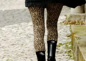 800px-Tiger_legs