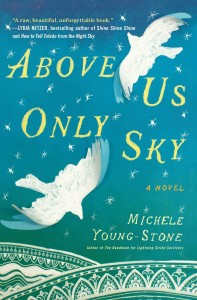 above-us-only-sky-9781451657685_hr